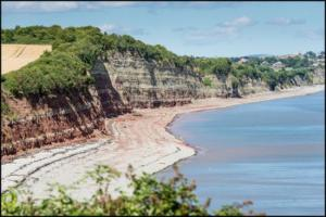 fossil-hunting-at-penarth